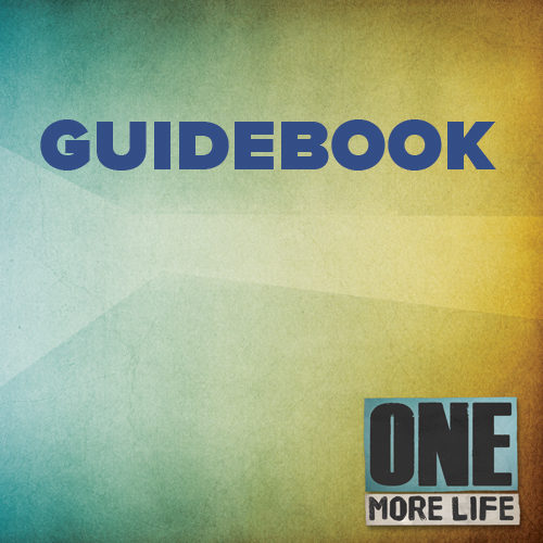 Guidebook for One More Life
