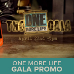 gala promo sq